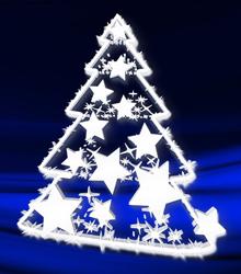 Weihnachtspreisschießen 2011